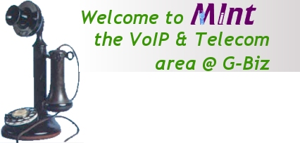 Welcome to MInt - The VoIP & Telecom area @ G-Biz